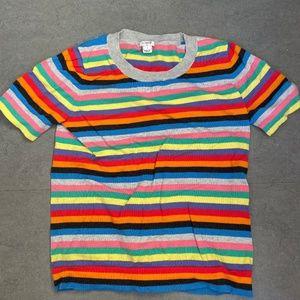 J. Crew Rainbow Stripe Multi Color Sweater